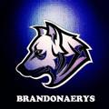 brandonaerys